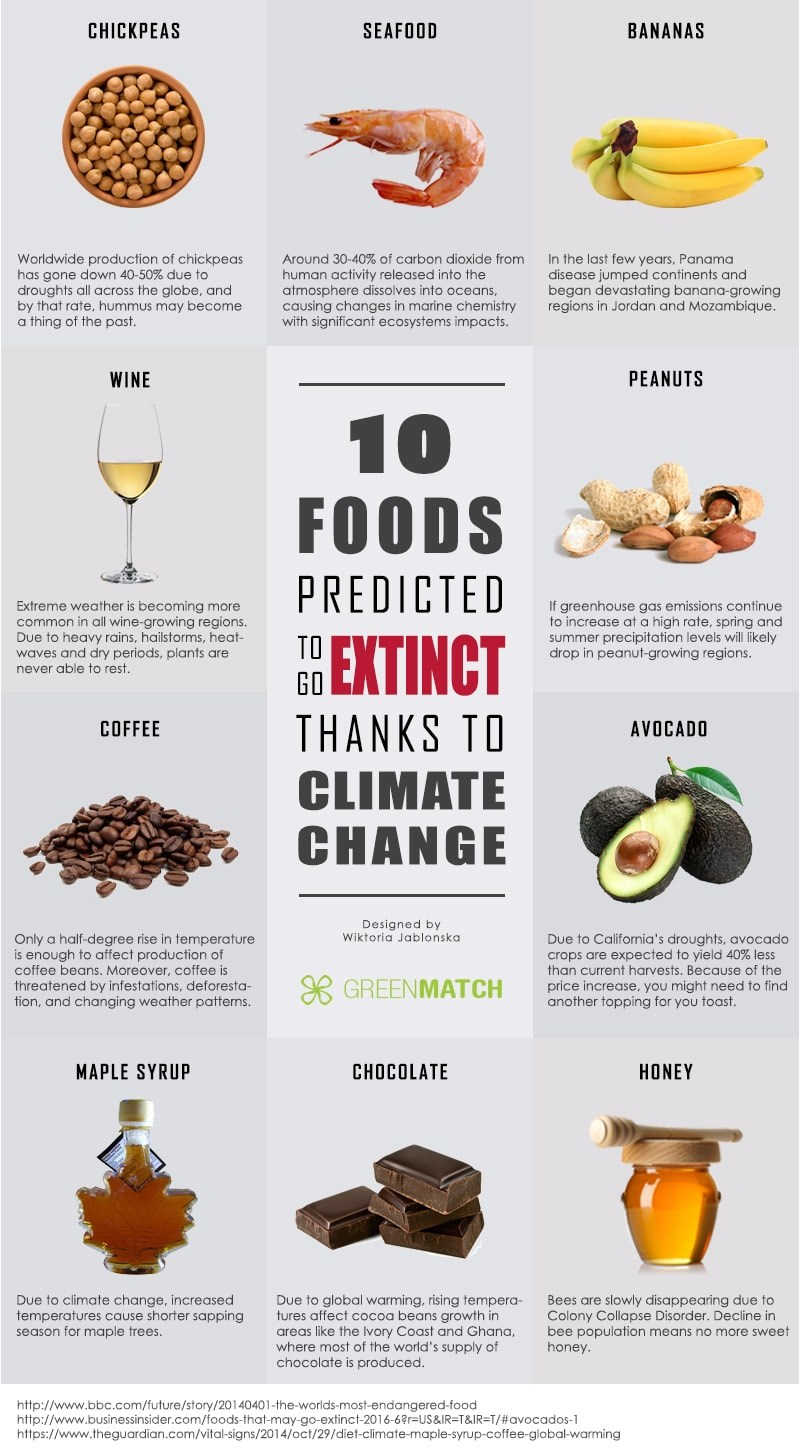food diet climate change
